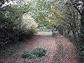 Basingstoke Canal, Up Nately 01.jpg