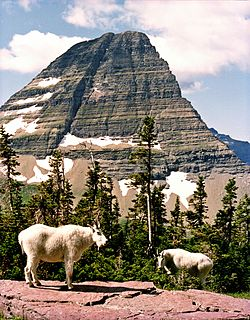 Bearhat Mountain mountain in United States of America