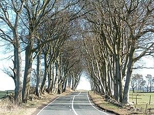 A70 road - A70 near Crosswood Hill Farm