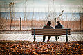 Bench on the Beach - Toronto 2010.jpg