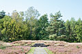 Bergen-Belsen concentration camp memorial - mass grave No 3 - 02.jpg