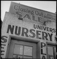Berkeley, California. Residents of Japanese ancestry are closing out their businesses in preparatio . . . - NARA - 537832.tif