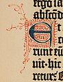 Biblia de Gutenberg, 1454 (Letra E) (21844573741).jpg