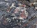 Big garnet amphibolite (Precambrian; Warrensburg, Adirondack Mountains, New York State, USA) 57.jpg