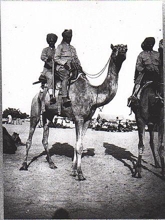 Sinai and Palestine Campaign - Bikaner Camel Corps, El Arish 1918