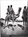 Bikaner Camel Corps, El Arish 1918 (IWM Q50888).jpeg