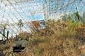 Biosphere 2015 01 18 0324.jpg