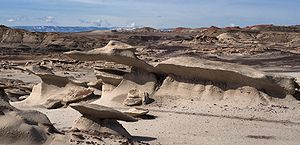 Bisti/De-Na-Zin Wilderness - More strange shapes in the Bisti Badlands