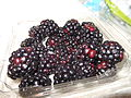 Black Raspberries.jpg