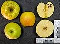 Blondy (apple) jm120630.jpg