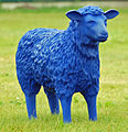 Blue Sheep 02.jpg