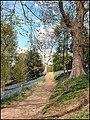Bluebells Walk, Emmett's Gardens, Kent (484143138).jpg