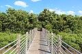Boardwalk - panoramio (6).jpg