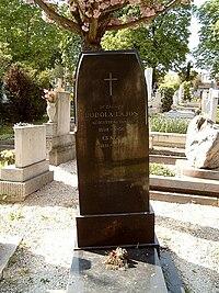 Bodola Lajos sírja.jpg