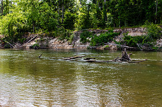 Bogue Chitto State Park Bogue Chitto River.jpg