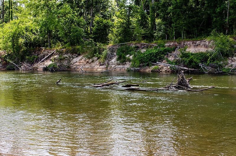 File:Bogue Chitto River.jpg