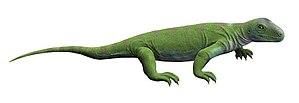 Bolosaurus - Life reconstruction of Bolosaurus striatus