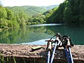Borsko jezero u leto.jpg