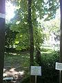 Botanička Bašta Jevremovac 002.JPG