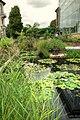 Botanischer Garten - panoramio (3).jpg