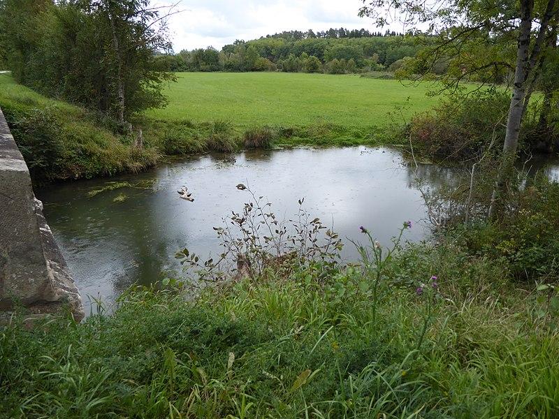 La Bouvade peu avant son confluent avec la Moselle.
