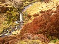 Bowland Forest High BB7, UK - panoramio (15).jpg