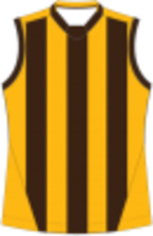 Heathcote District Football League - Image: Box Hill Football Guernsey