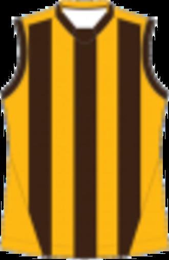 Heathcote District Football League - Image: Box Hill Football Guernsey