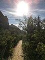 Boynton Canyon Trail, Sedona, Arizona - panoramio (46).jpg