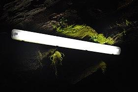 Brest souterrain 04.jpg