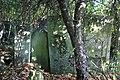 Briceni Jewish Cemetery 80.JPG