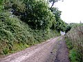 Bridleway, near Peamore Arch - geograph.org.uk - 1457970.jpg