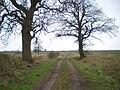 Bridleway at Sutton Maddock in Shropshire, England.jpg
