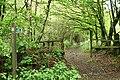 Broadhembury, Bridleway on Stafford Hill - geograph.org.uk - 173821.jpg