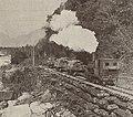 Bruce Bay Timbers tramway 1941.jpg
