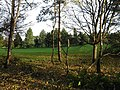 Bruntsfield Links Golf Course - geograph.org.uk - 1052474.jpg