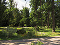 Bucha park13.JPG