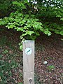 Bucksburn Valley Paths sign - geograph.org.uk - 441097.jpg