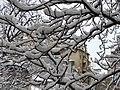 Bucuresti, Romania. Imagine de iarna autentica in Bucuresti, 6.02.2020.jpg