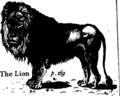 Buffon's Natural history, abridged Fleuron T138885-8.png