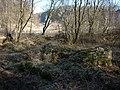 Building remains, Trowbarrow Quarry - geograph.org.uk - 1748930.jpg