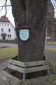 Burghaun Langenschwarz Protestant Church Raiffeisenlinde.png