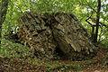 Burgruine Steinegg - umgestürzte Mauerreste.jpg