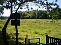 Bussum Cruysbergen oostzijde 91.JPG