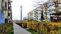 Bydgoszcz , Osiedle Kapuściska - panoramio (136).jpg