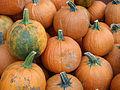 Calabazas de halloween pedúnculos.jpg