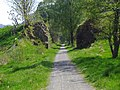 Callander to Strathyre cycle path - geograph.org.uk - 809536.jpg