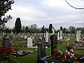 Cambridge City Cemetery, Newmarket Road - geograph.org.uk - 644804.jpg