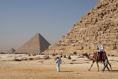 Camel and the pyramids.jpg