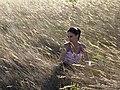 Campos do Alto da Serra da Canastra IMG 4873.jpg